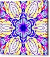 Illuminated Blossom Acrylic Print