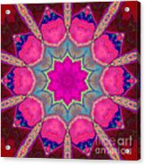Illuminated Rose Acrylic Print