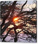 Illuminating Sunset Acrylic Print