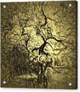 Illusion Tree Acrylic Print
