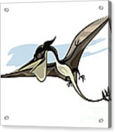 Illustration Of A Pteranodon Dinosaur Acrylic Print