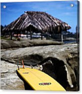 I'm Board Acrylic Print by Peter Tellone