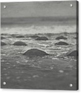 I'm Going Under Acrylic Print by Laurie Search