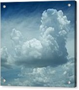 Image In The Sky Acrylic Print