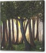 Imagined Forest Acrylic Print