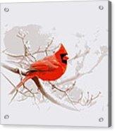 Img 2559-17 Acrylic Print