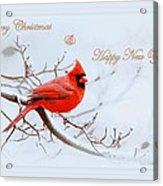 Img 2559-32 Acrylic Print