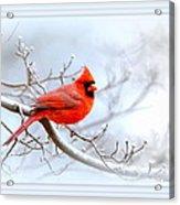Img 2559-43 Acrylic Print