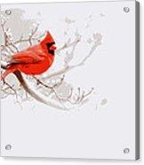 Img 2559-9 Acrylic Print