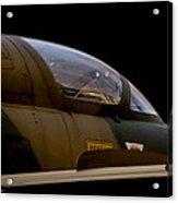 Impala II Acrylic Print