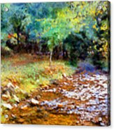 Impressionist Rocky Creek Acrylic Print