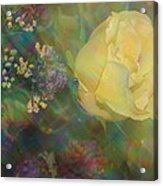 Impressionistic Yellow Rose Acrylic Print