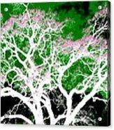 Impressions 1 Acrylic Print