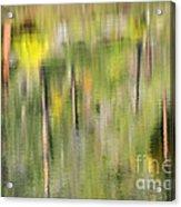 Impressions Of Autumn Acrylic Print