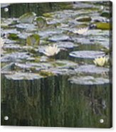 Impressions Of Monet's Water Lilies  Acrylic Print