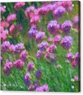 Impressions Of Purple Acrylic Print