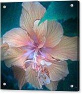 In A Butterfly Garden Acrylic Print