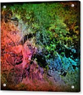 In A Colorful World Acrylic Print