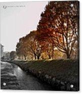 In A Dreamy Autumn Haze Acrylic Print
