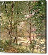 In A Fairy Woodland Acrylic Print