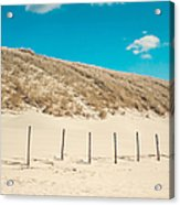 In A Line. Coastal Dunes In Holland Acrylic Print