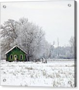 In A Sea Of White Acrylic Print