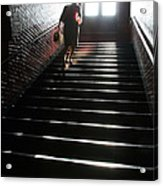 In A Stairwell Acrylic Print
