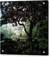 In And Out Of The Garden Acrylic Print