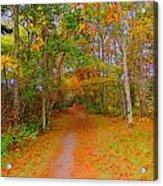 In Beauty I Walk Acrylic Print
