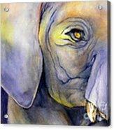 In Captivity Acrylic Print