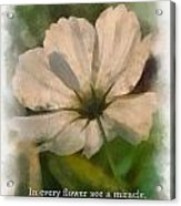 In Every Flower See A Miracle 01 Acrylic Print