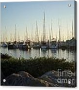In Harbor Acrylic Print by Amy Strong
