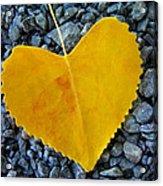 In Love ... Acrylic Print by Juergen Weiss