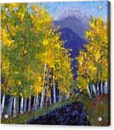 In Love With Fall River Road Acrylic Print