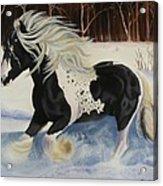 In Memory Of Kayleen Acrylic Print