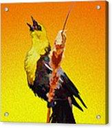In Rapturous Joy He Sings Acrylic Print