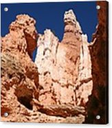 In The Bryce Canyon Acrylic Print