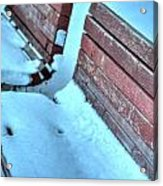 In The Coldest Of Days...i Still Wait... Acrylic Print