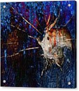 In The Depths - Marucii Acrylic Print