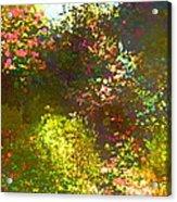 In The Garden Acrylic Print by Pamela Cooper