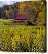 In The Heart Of Autumn Acrylic Print