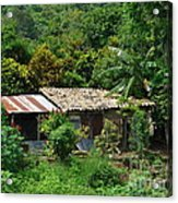 In The Jungle House Acrylic Print