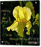 In The Morning Acrylic Print