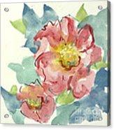 In The Pink II Acrylic Print