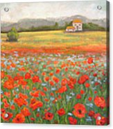 In The Poppy Field Acrylic Print