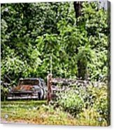 In The Shade Acrylic Print