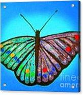 Cosmic Butterfly  Acrylic Print