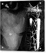 In The Web Acrylic Print