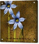 In Your Presence Is Fullness Of Joy Acrylic Print