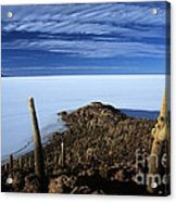 Incahuasi Island And Salar De Uyuni Acrylic Print
